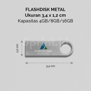 Flash Disk Metal